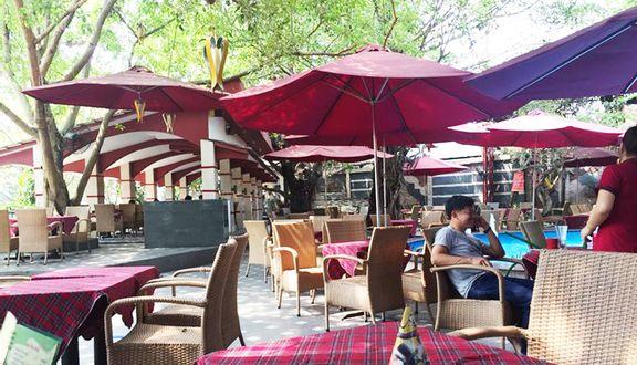 QTreo coffee - quán cafe ăn sáng hấp dẫn nên đến